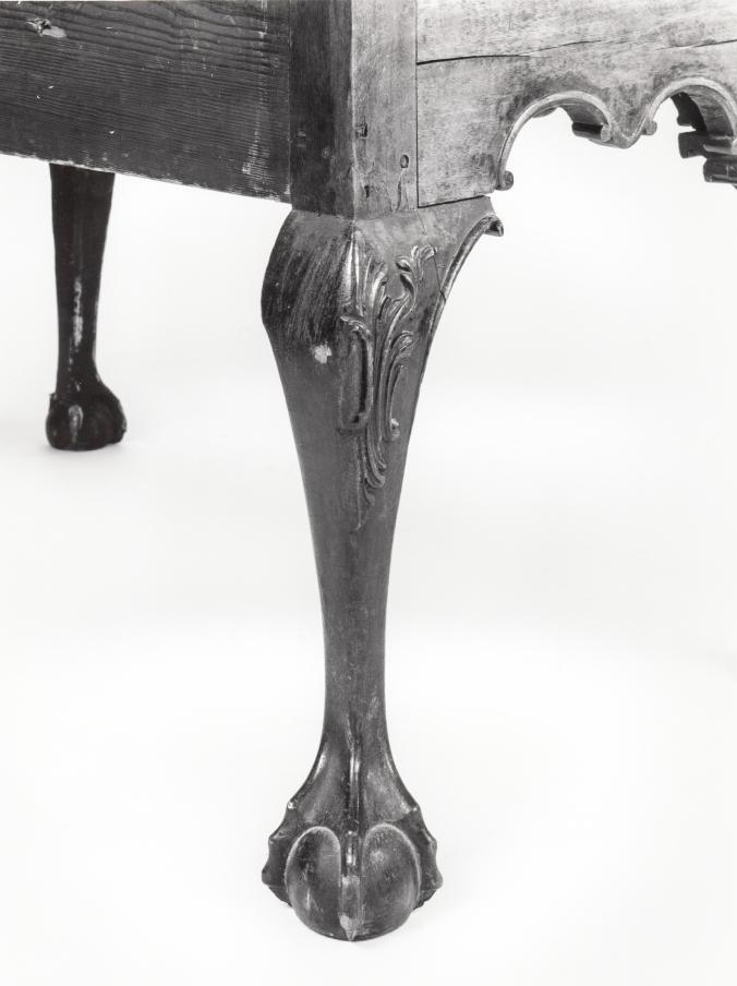 rear leg